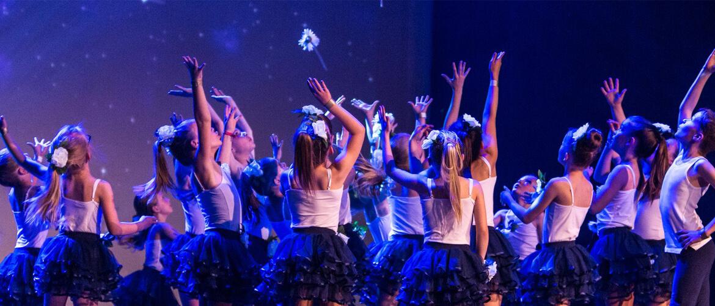 TOP1 est un véritable centre de formation. Porteur du certificat d'aptitude pédagogique, l'établissement est affilié à la fédération UBPDM-BULDO qui est la seule union professionnelle nationale reconnue en matière de danse.